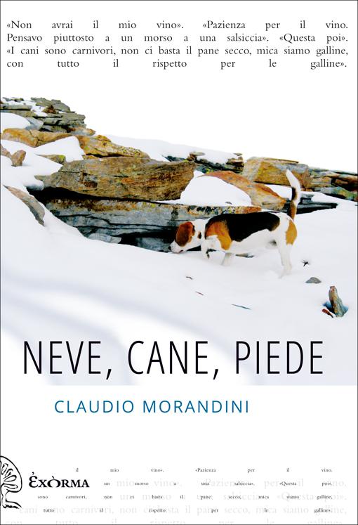Neve, cane, piede – Claudio Morandini