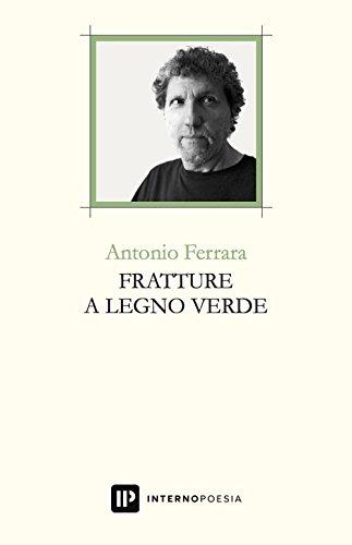 Antonio Ferrara - Fratture a legno verde