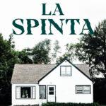 LA SPINTA di Ashley Audrain, traduzione di Isabella Zani, Rizzoli
