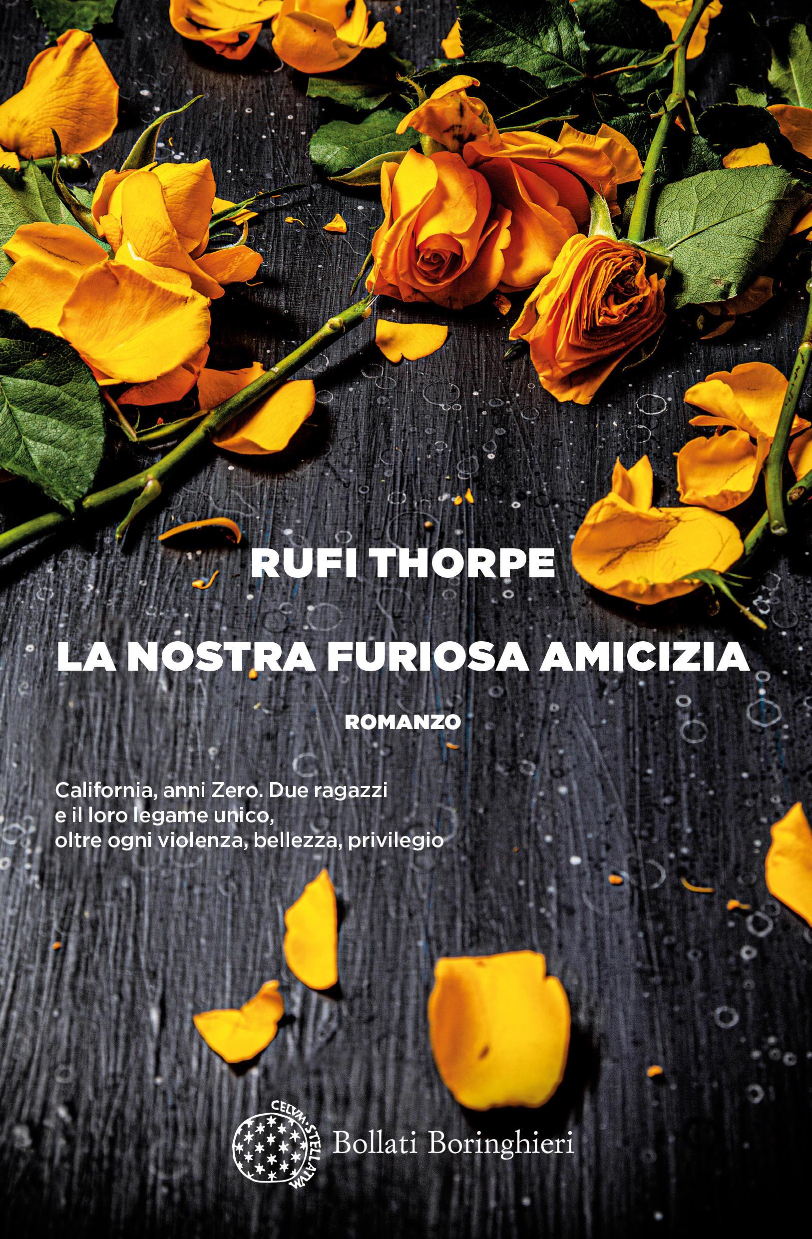 La nostra furiosa amicizia di Rufi Thorpe, Traduzione di Claudia Durastanti Bollati Boringhieri